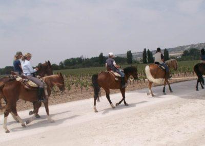 ruta-del-vino-22